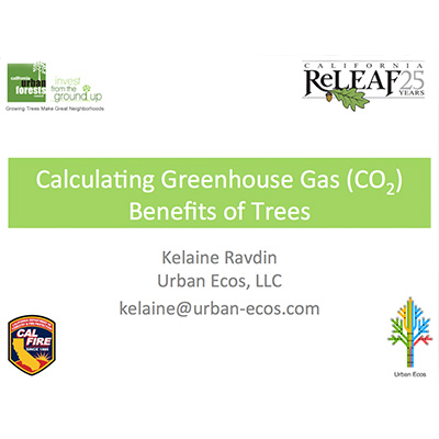Audio: Calculating GHG Benefits of Trees