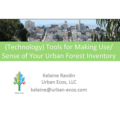 Technology Tools for Making Sense of Your Inventory