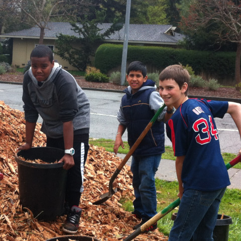 San Jose Middle School Tree Planting